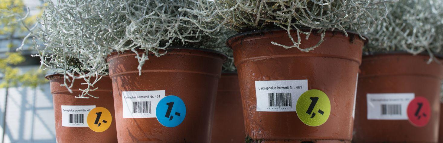 Ajándéket adunk Avery Zweckform termék vásárlása esetén